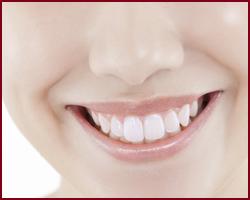 府中市の歯医者 歯ホワイトニング 武田歯科 口腔外科専門医